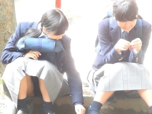 公園の石段に座ってる修学旅行中のあどけない制服JCちゃん、座りパンチラを盗撮される